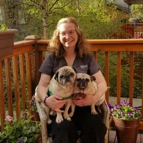 Client care representative holding 2 pugs on a balcony